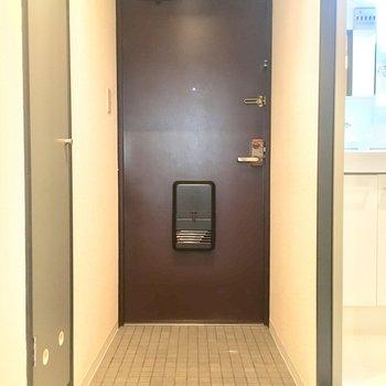 格子柄のタイルとドアの色味が相まって格好いい印象