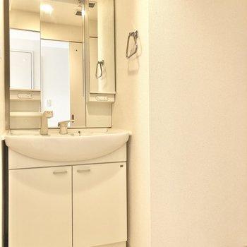 脱衣所にはこのコンビ。洗面台と洗濯機置場。