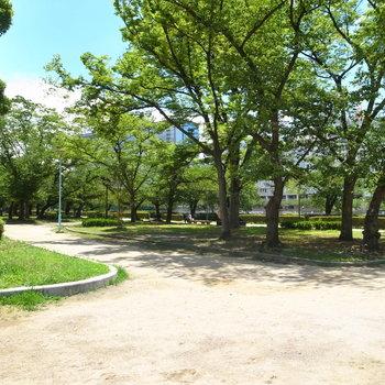 【周辺環境】すぐそばには「大川」と広い河川敷公園があります。付近にはカフェやパン屋さんが。ご家族そろってのおさんぽにぴったり!