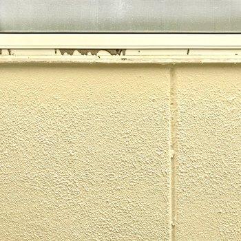 隣接する建物の壁が目の前に。同じ向きの他の窓も、眺望は白い壁でした。