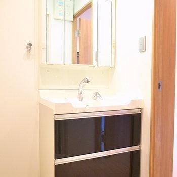 浴室を出ると目の前に大きめの洗面台があって、