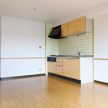 キッチンの横には大きめの冷蔵庫も置けそう!