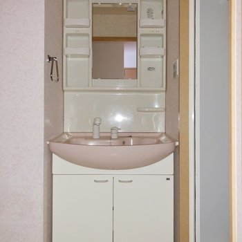 洗面台は収納棚も多く、機能性〇(※写真はフラッシュ撮影をしています)