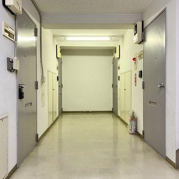 玄関前共用部。お部屋は左手前のドアです。