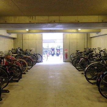 駐輪場その2、室内にもありました。