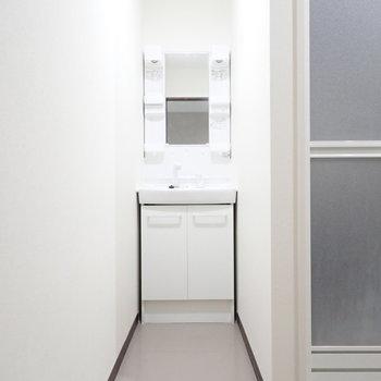 洗面台はやや長めのアプローチの向こうへ。右を向くと、
