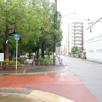 すぐ目の前は公園です。静かな通りでした。