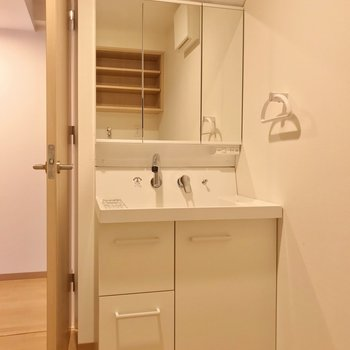 洗面台は鏡が大きくて朝の支度もラクラク!(※写真は2階の同間取り別部屋のものです)