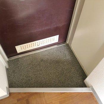 玄関はコンパクト。傘立てなどはマグネットでくっつけるタイプがおすすめ。(※写真は同じ建物の3階の写真です。)