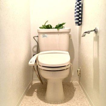 トイレもお部屋と同じ色のクロスが。統一感がありますね。
