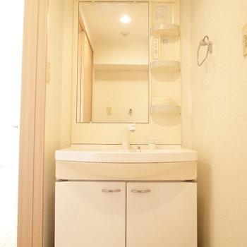 独立洗面台はほしいところ。(※写真は6階の同間取り別部屋のものです)