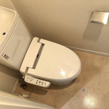 個室トイレで落ち着けますね。