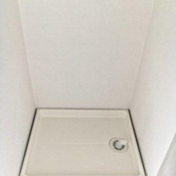 洗濯機置き場は玄関に。気になる場合は突っ張り棒でカーテンを作って目隠しを。