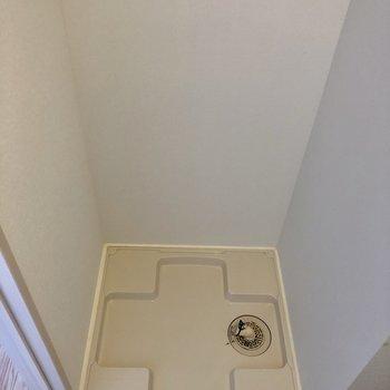 洗濯機置場も同じ空間です。