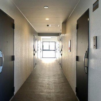 共用廊下は黒系でシックでした。築浅なのでやっぱり綺麗。