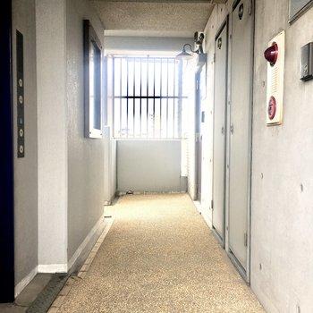 玄関出てすぐの廊下。アビイロードではありませんよ。