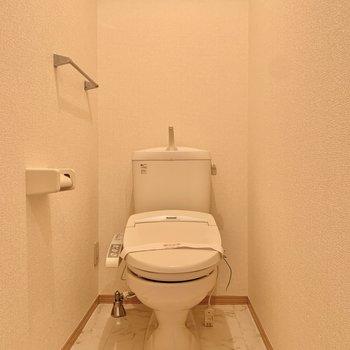 広々としたトイレです。