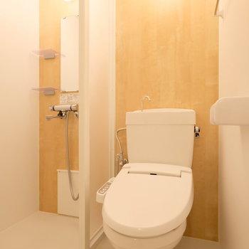 シャワールームとトイレは併設されています