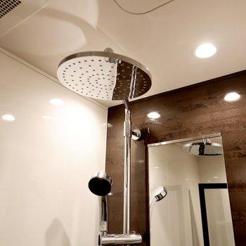 オーバーヘッドシャワーが使えますよ。