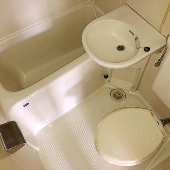 水回りは3点ユニットです。シャワーで丸洗いすることもできます。(※写真は6階の同間取り別部屋のものです)
