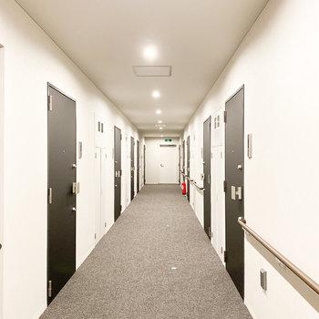 共用廊下の床はカーペットです