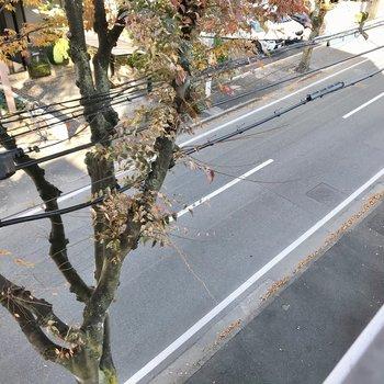見下ろすと道路。車通りは少なめで、音はあまり気になりませんでした。