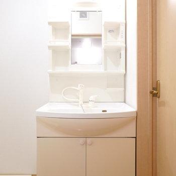 手前に洗面台。棚付きなので収納もできます。