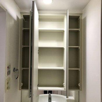 鏡を開けると大きな収納スペースが!