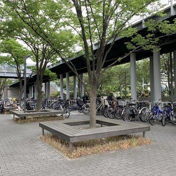 駐輪場とバイク置き場はズラッと。