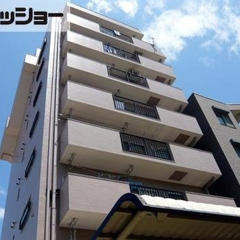 徳川パークサイドマンションB棟