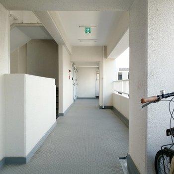共用廊下も広くて清潔。