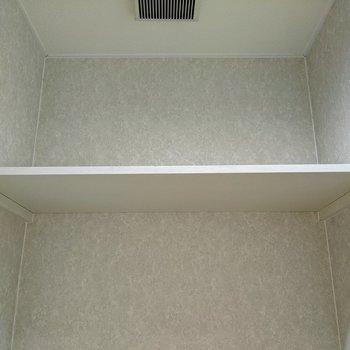 トイレ上部には棚があります。トイレットペーパーなどが置けますよ。
