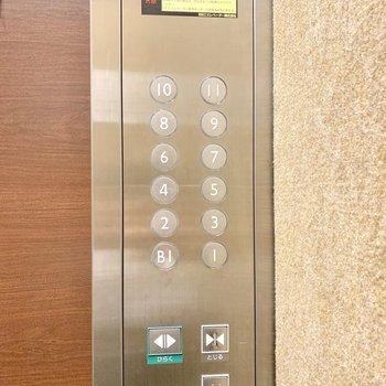 エレベーターに安心のペットボタンが付いていました。