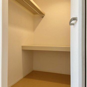 【洋室WIC】パイプと棚があるのでお洋服以外のものもたくさん収納出来そうです。
