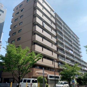 マンションは10階建て。