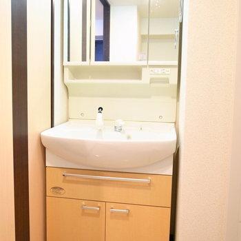 浴室を出ると洗面台があります。※写真と文章は11階の同間取り別屋のものです。