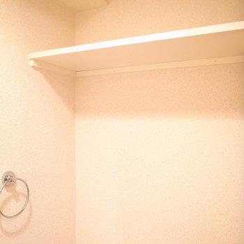頭上に簡単な収納棚があります。※写真と文章は11階の同間取り別屋のものです。