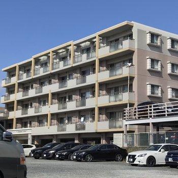 どっしりした建物。駐車場も空きがありますよ。