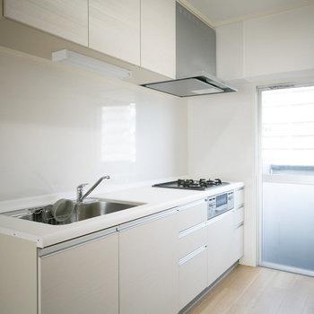 キッチンはかなり大きなシステムキッチン!壁はホーロータイルで手入れもしやすく、マグネットをつけることもできます。※画像は同カラー・同間取り(反転タイプ)の別室です。