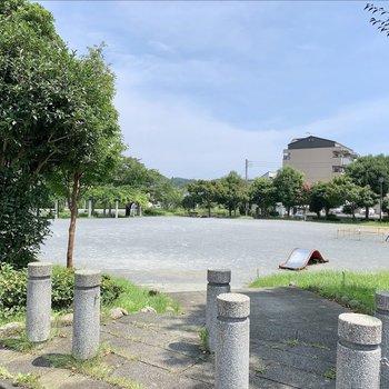 近くに大きな公園がありました。