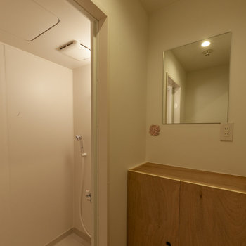 【共用部】脱衣所とシャワールーム。鏡の近くにコンセントがあるのは嬉しいポイントですね。