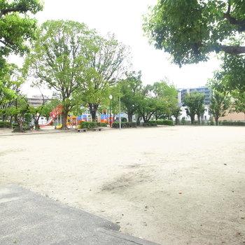 【周辺環境】すぐとなりの大きめの公園です。
