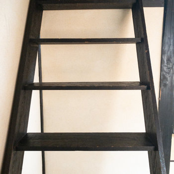 こっちはロフトの階段。