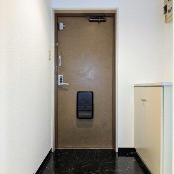 ゆったりとした広さの玄関スペース。