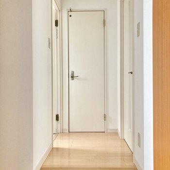 玄関入って正面がトイレ、左側はサニタリースペース。