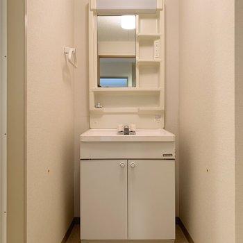 洗面台は普通サイズ。