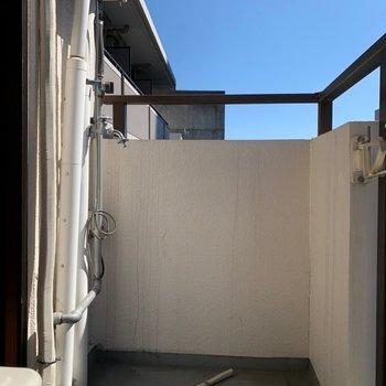 ちょっと狭めです。洗濯機置き場はバルコニーになります!(※写真は7階の同間取り別部屋のものです)