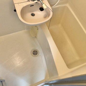洗い場スペースはしっかり確保。
