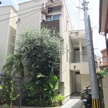 南国風の植栽が印象的な建物の1室です。