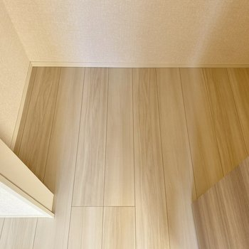 【洋室4.5帖】クローゼットは人1人入れるほどの空間。